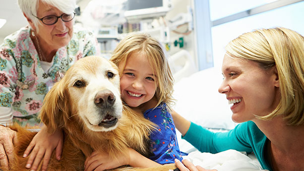 Little girl with therapy dog in hospital